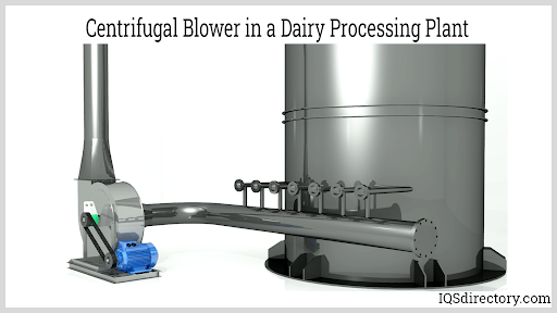 Centrifugal Blower in a Dairy Processing Plant