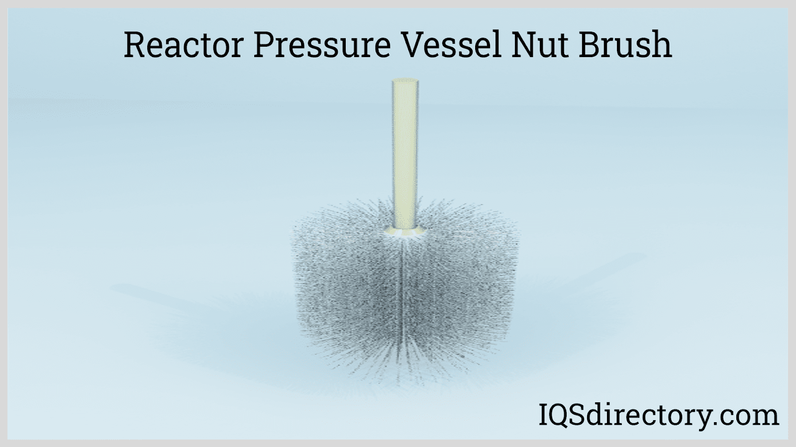Reactor Pressure Vessel Nut Brush