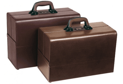 Veterinary Carrying Case