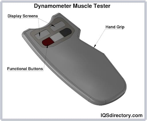 Dynamometer Muscle Tester