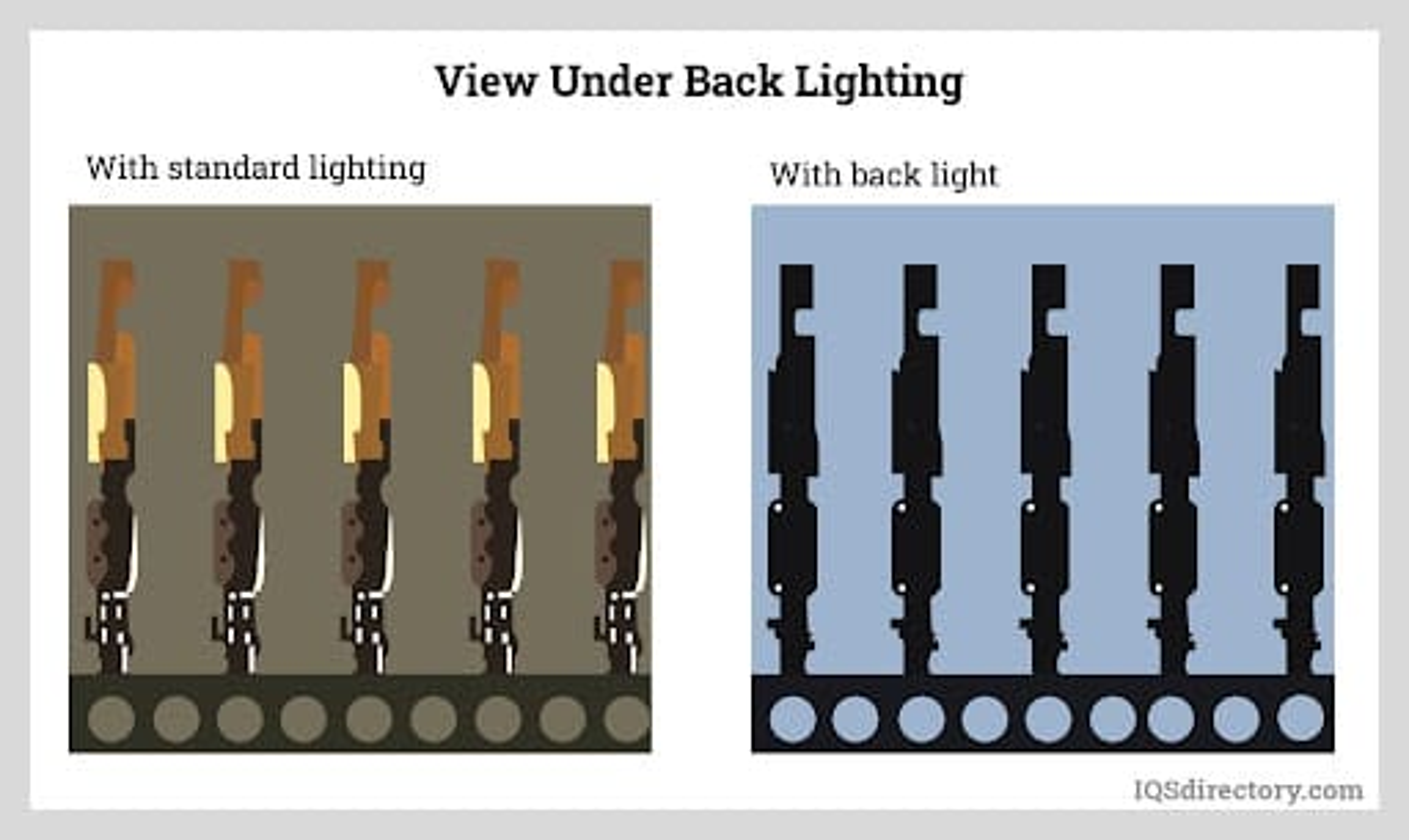 View Under Back Lighting