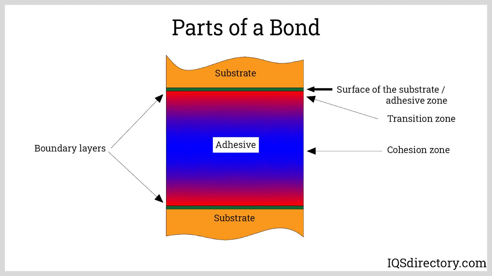Parts of a Bond