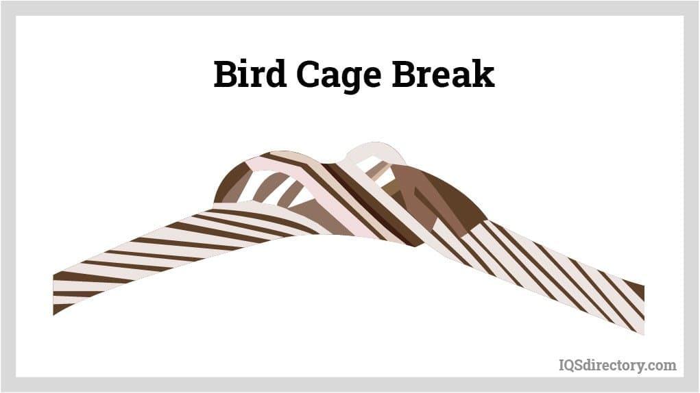 Bird Cage Break