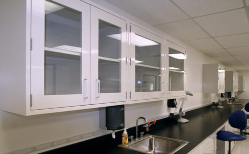 Eclipse Laboratory Wall Cabinets