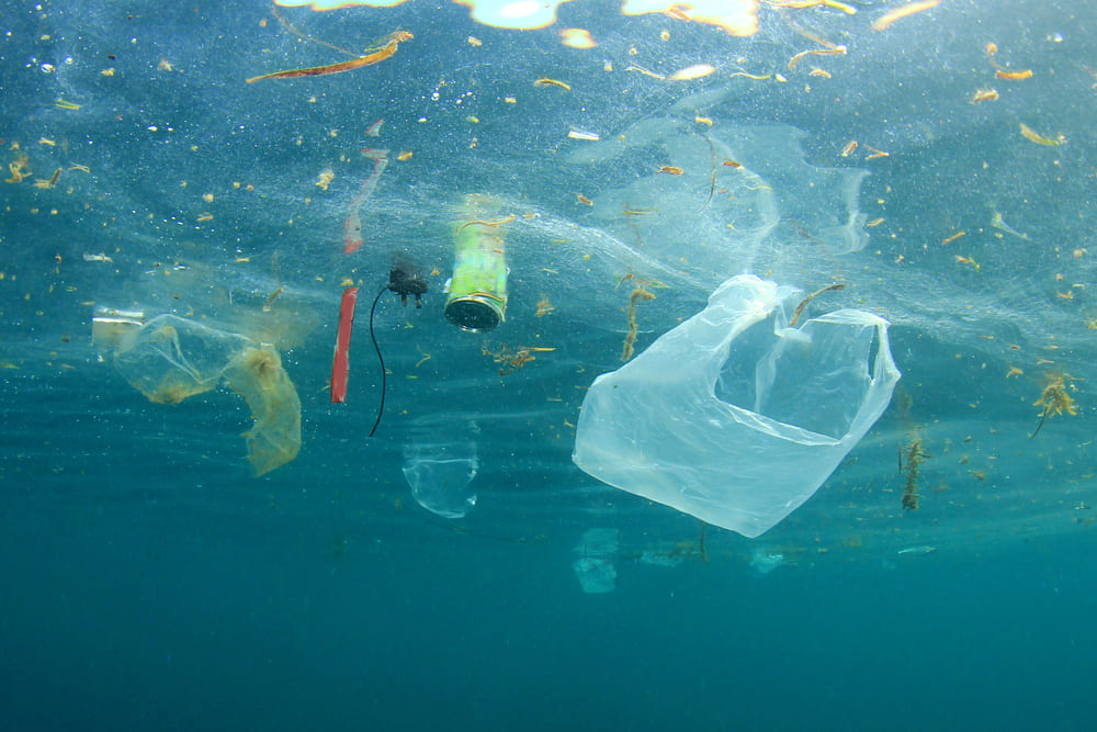 The Threat of Plastics